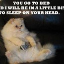 You go to bed