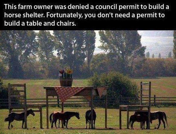 Epic Farm Owner