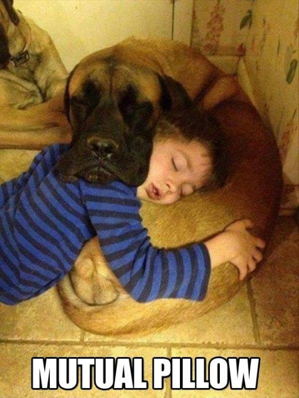 Mutual Pillow