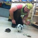 Serious Pet Store