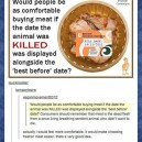 Vegan Ideas