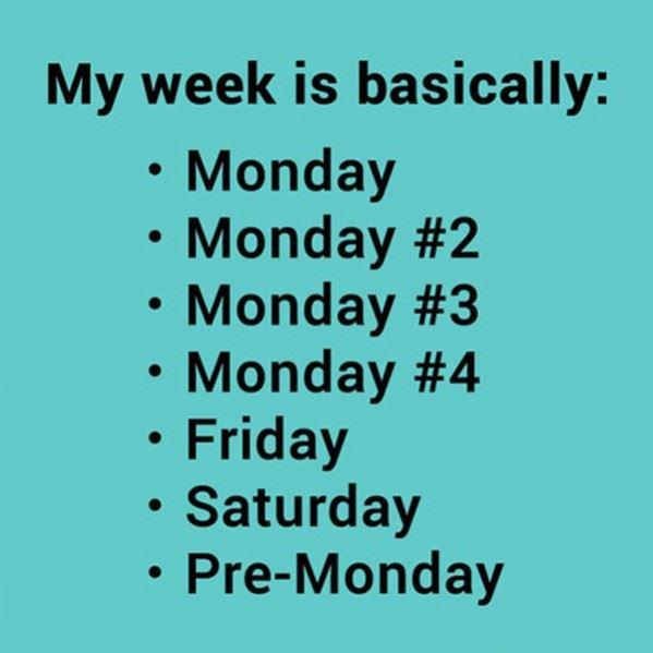 My Work Week
