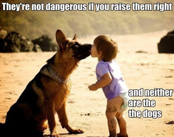 Not Dangerous