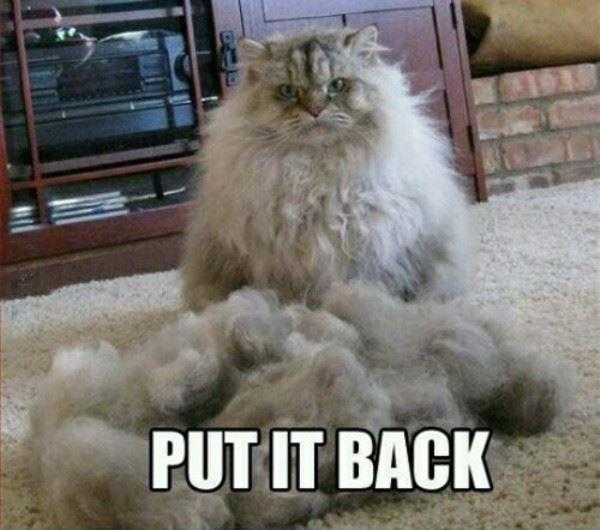 Put it Back Now