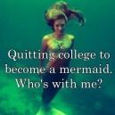 Quitting College