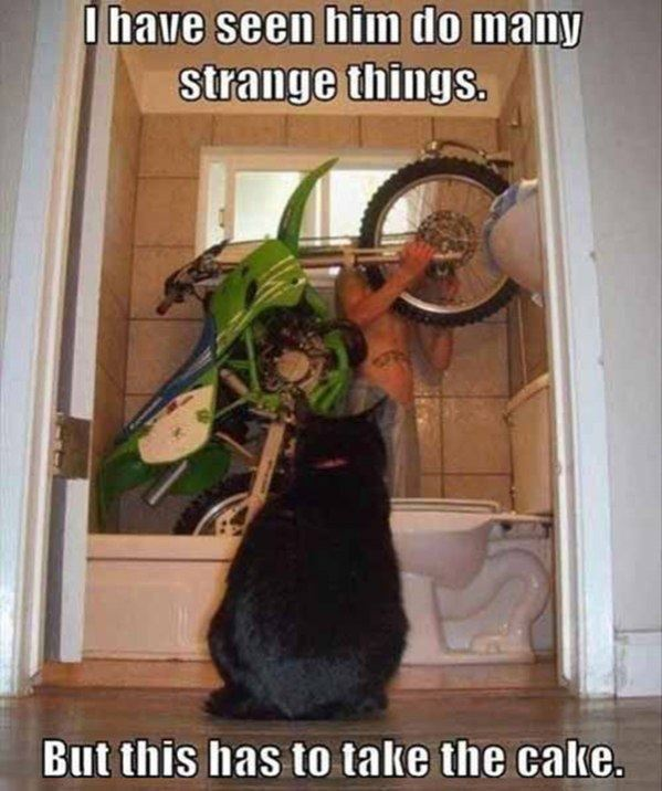 Do Strange Things