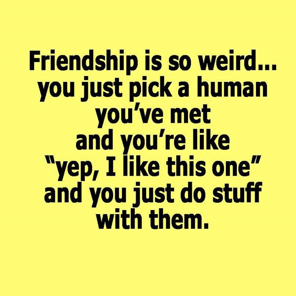 Friendships are weird