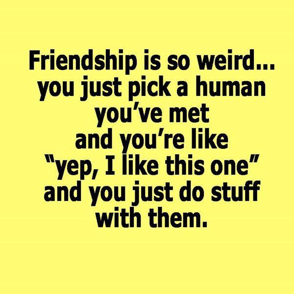 Friendships are weird