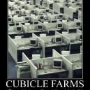 Cubicle Farms