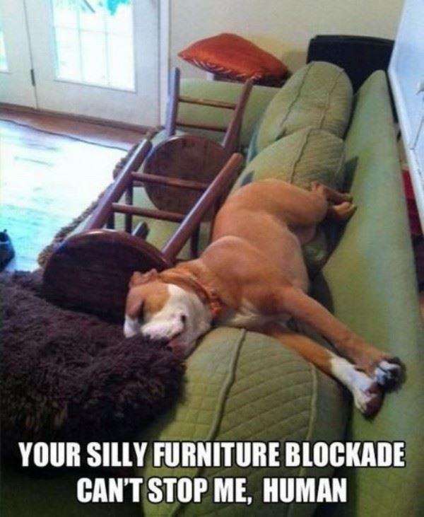 Furniture Blockade