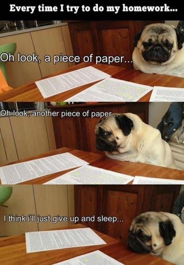 When I do homework
