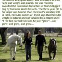 The worlds biggest dog