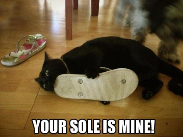 Your Sole