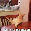 I Am Hungry!