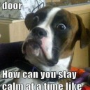 Someone is at the door