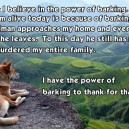 Barking saved his life