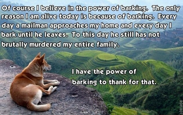 Barking saved his life