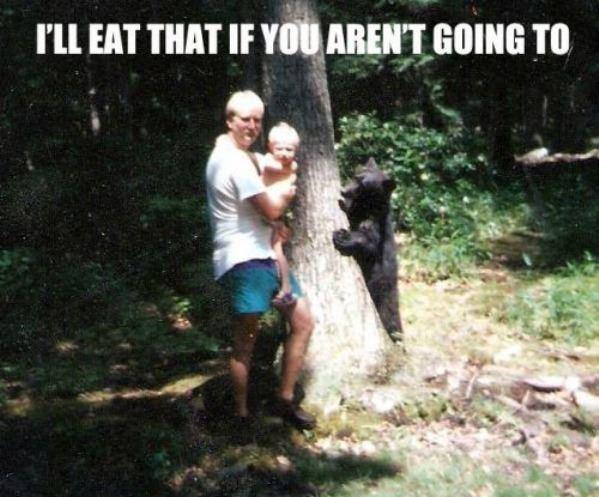 Cute Hungry Bear