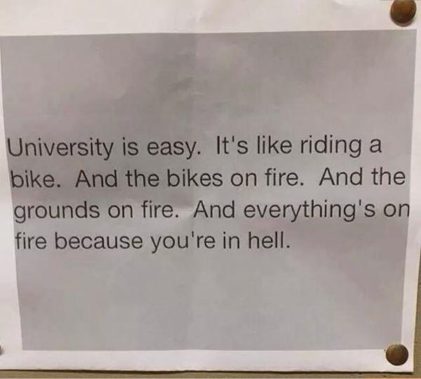 University is easy
