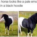 Emo Horsey