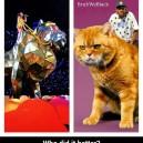 Katy Perry vs. Tyler The Creator
