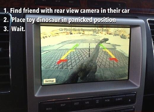 Toy dinosaur prank