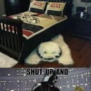 Want that bed