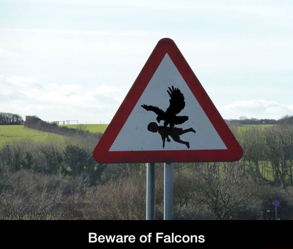 Beware of Falcons