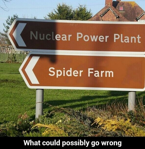 What could possibly go wrong