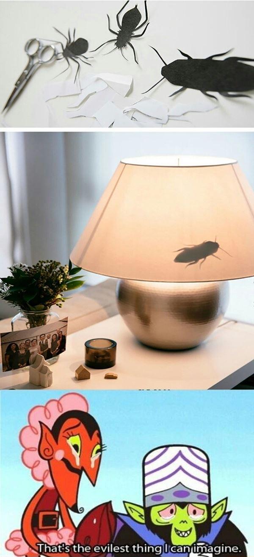 Cockroach Prank