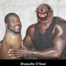 Shaquille O'Seal