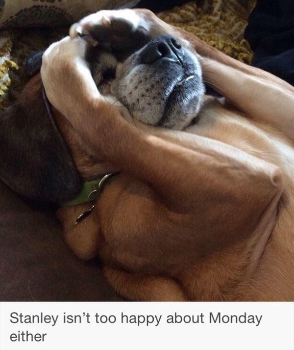 Awful Monday