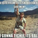 Steve Irwin The Legend
