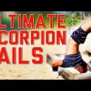 Ultimate Scorpion Fails!