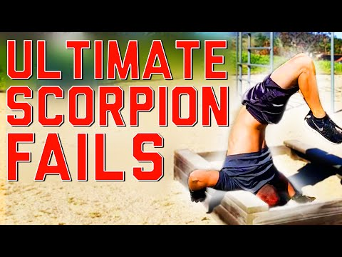 Ultimate Scorpion Fails!