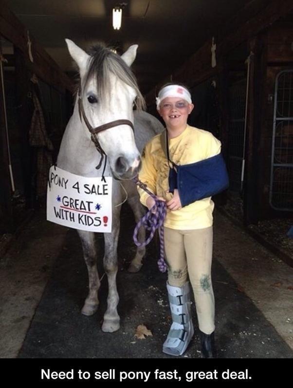 Pony for sale!