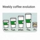 Weekly Coffe Evolution