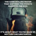 It's All About What You're Made Of
