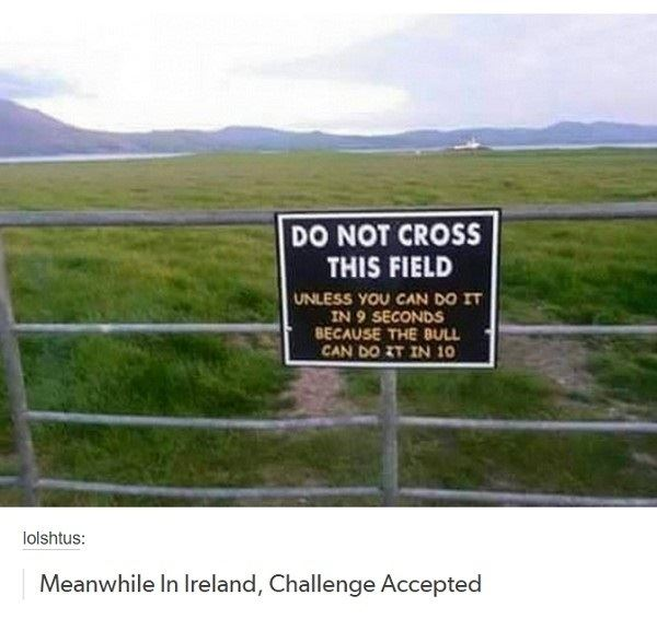 Meanwhile, In Ireland…