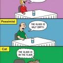 Optimist, Pessimist And The…