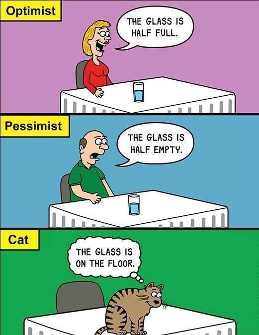 Optimist, Pessimist And The…