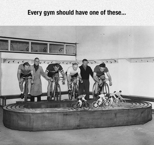 I Would Go To The Gym Every Day