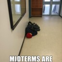 The midterms