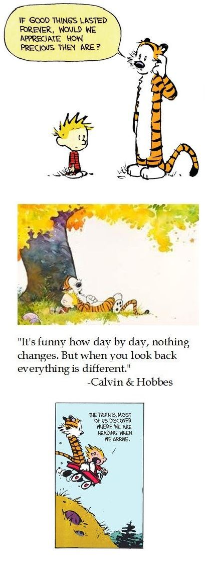 We need more Calvin and Hobbes around here