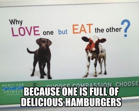 Love One, But Eat The Other