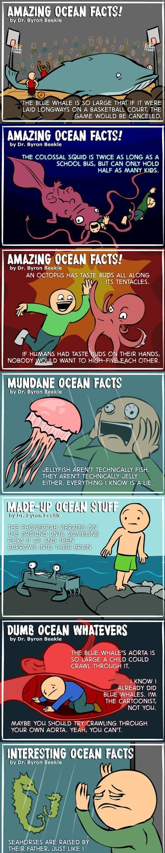 Crazy Ocean Facts You Probably Don't Know