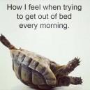 Especially on Mondays