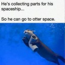 Get to otter space