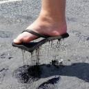 It's a Bit Hot In Australia Today