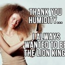 Thanks Humidity